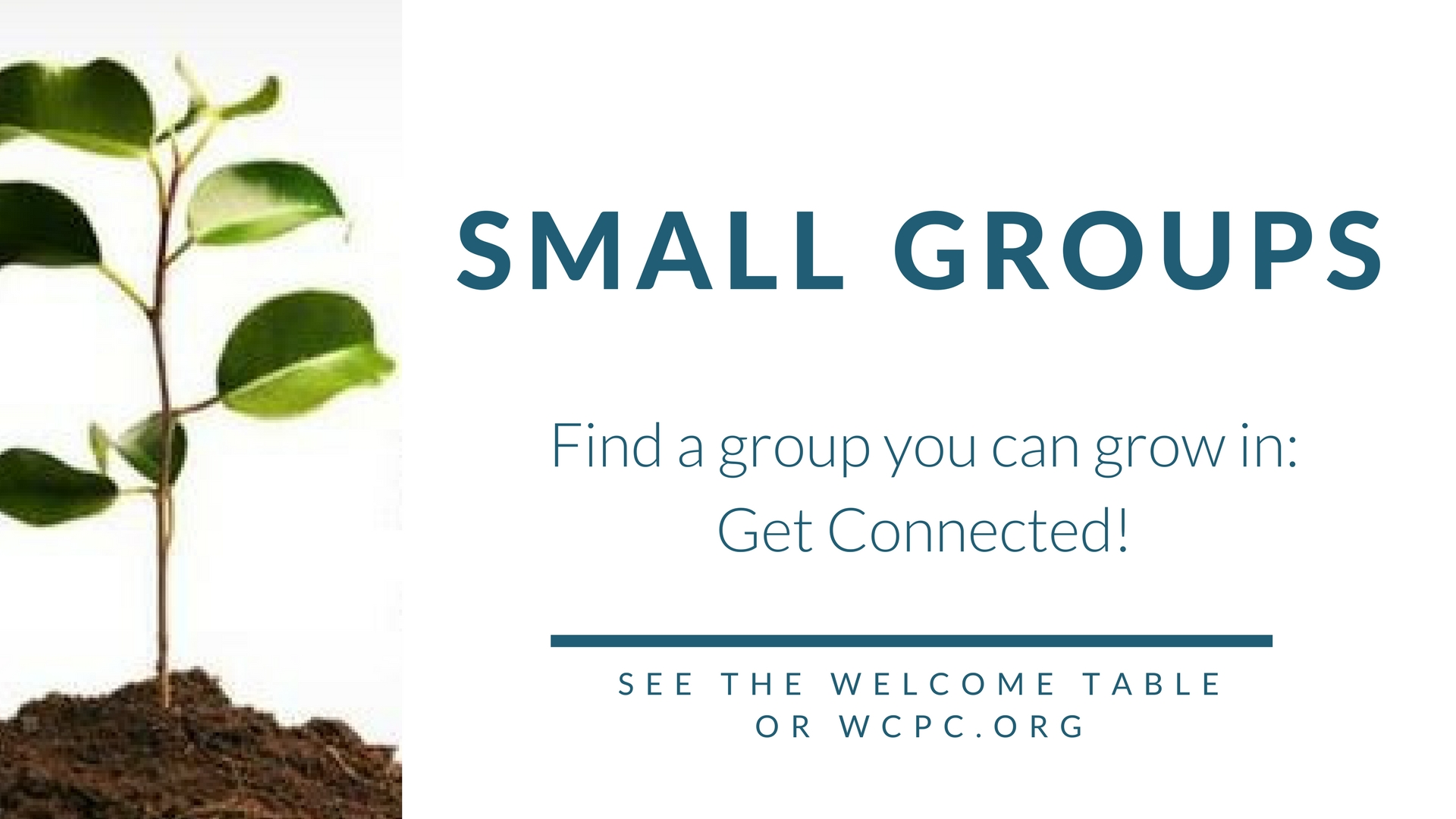 Small Groups(1)